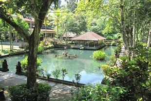 透明度抜群の清らかな池